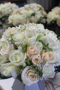 Weddings00010